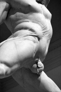 19-7566-#22-rpx400-Hercule-Canova